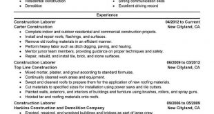 Resume Examples Construction