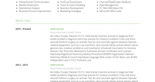 Resume Format Veterinary Doctor