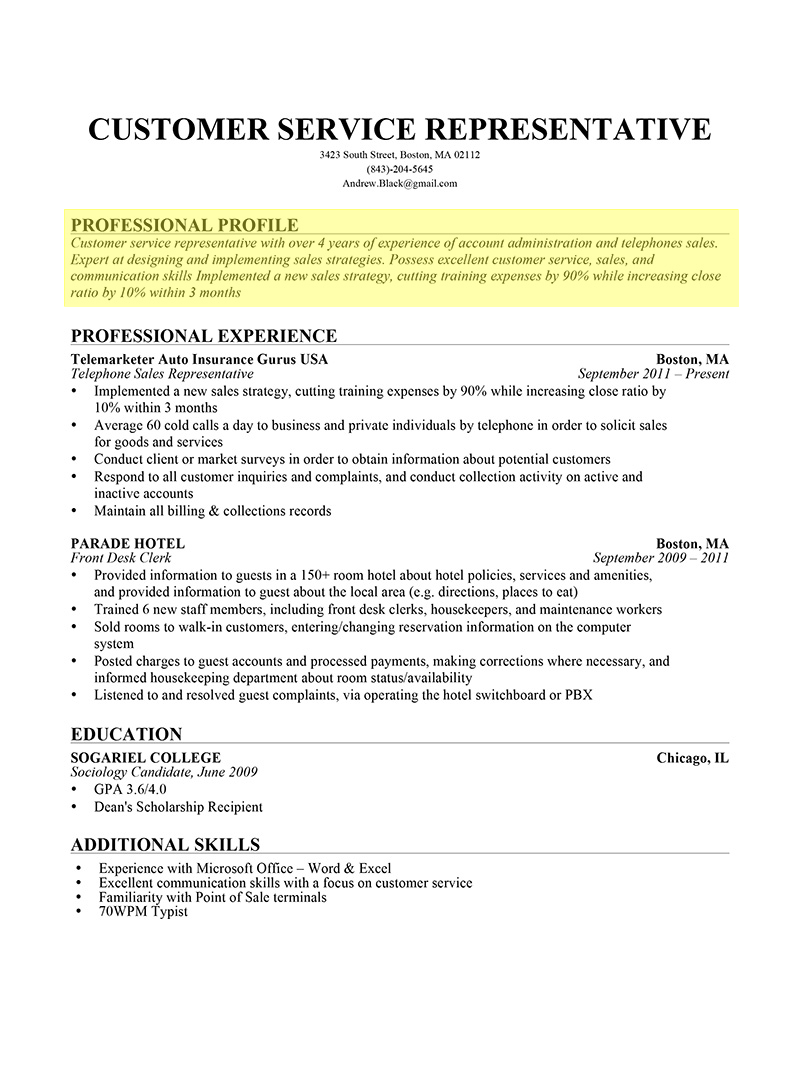 Resume Examples Profile