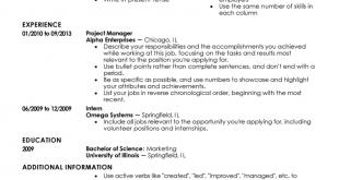 Resume Templates Beginner