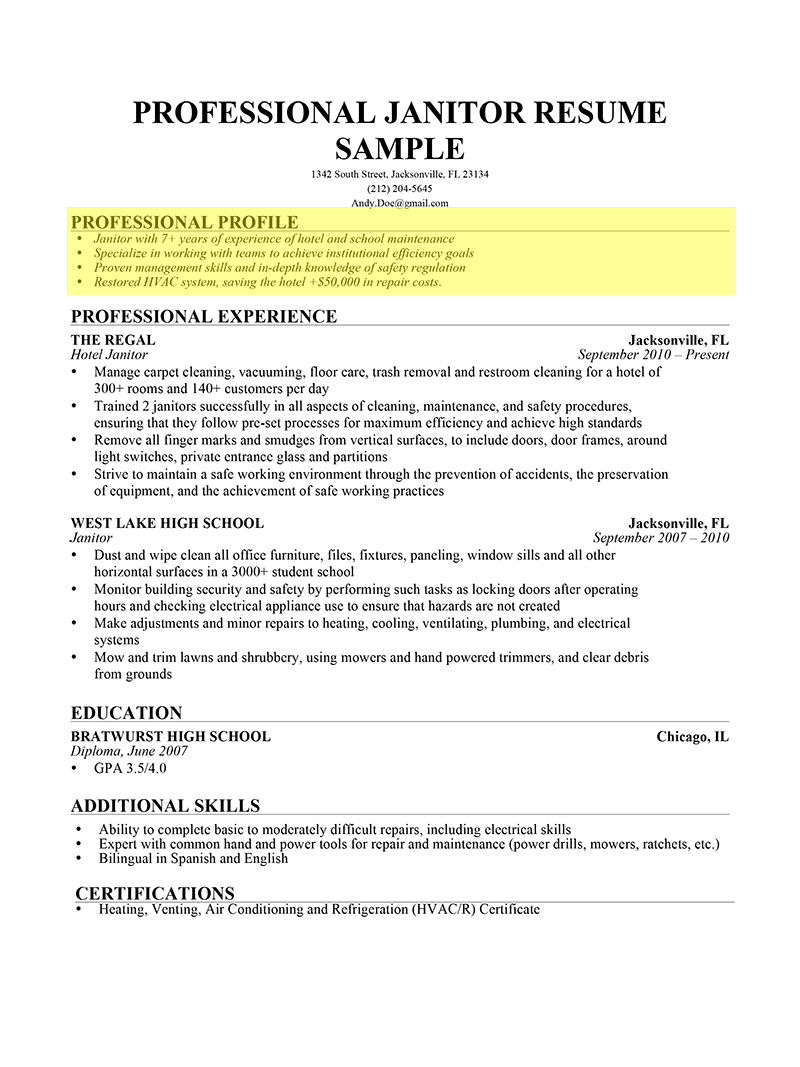 Profile On Resume Examples