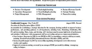 Resume Examples Director Of Operations