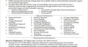 Resume Templates Executive