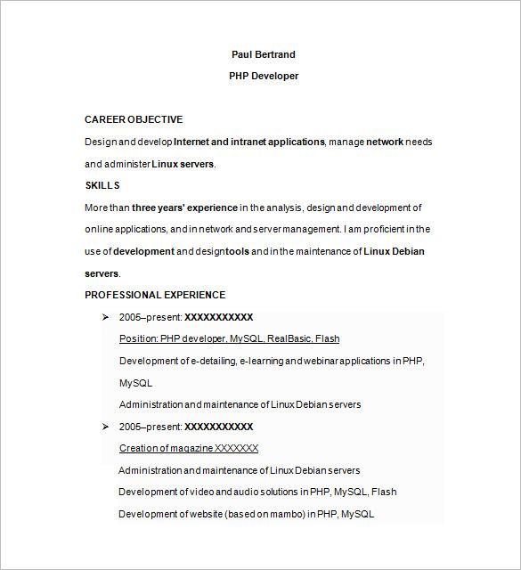 ecommerce developer resume format