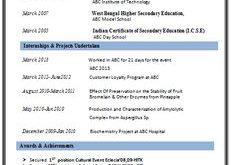 1 Page Resume Format For Freshers