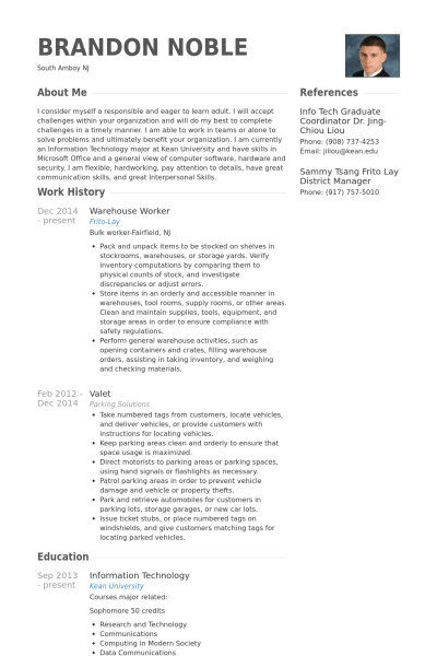 Toys R Us Resume Examples Resume Templates