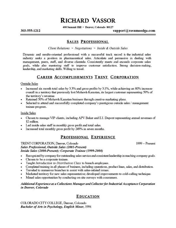 Resume Examples Summary