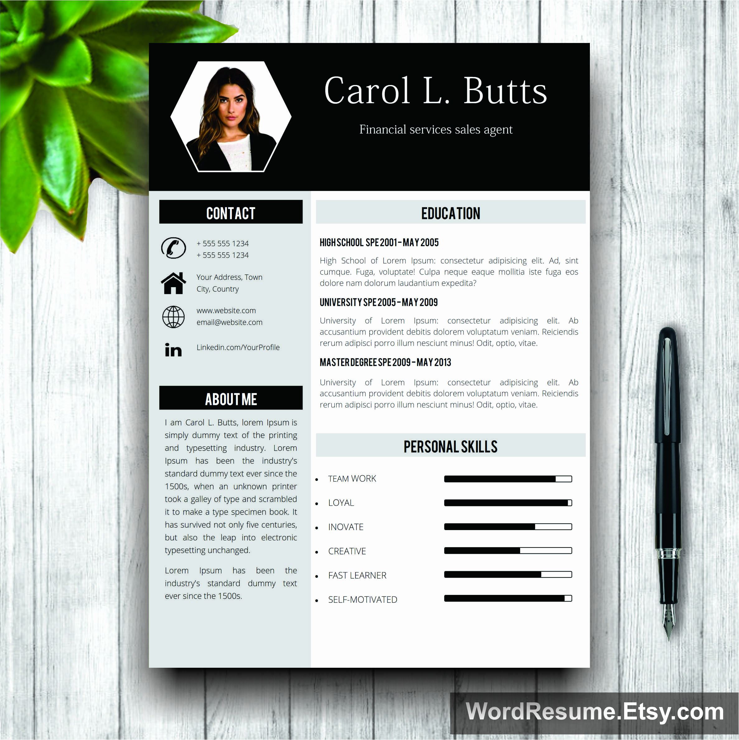 Resume Templates To Buy