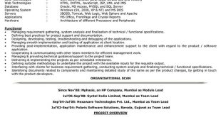 5 Years Experience Resume Format